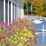 October 2014 Fall Foliage - 079