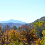 October 2014 Fall Foliage - 101