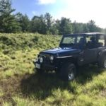 2004 Jeep TJ - Bikini in Grass (Original)